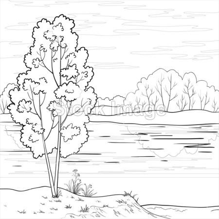 森林木头简笔画的画法
