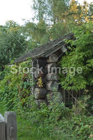 农村老式房设计图