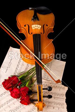 雨沫简谱网 小提琴谱 玫瑰小提琴五线谱   描述:通过以上搜索,您能
