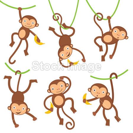 > 搞笑猴子集