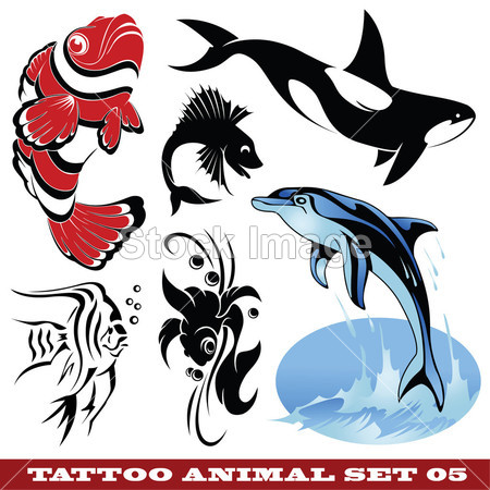 > 纹身鱼