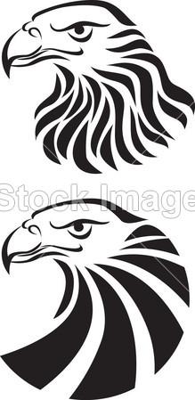 鹰头纹身艺术摄影图片下载_其它_其他_拍图网