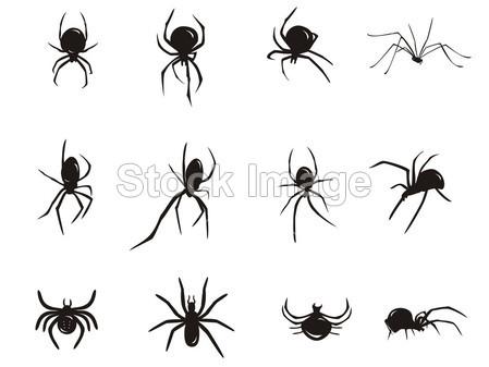 动物 蜘蛛 蜘蛛恐惧症 咬 黑色的 卡通 爬虫 令人毛骨悚然的 元
