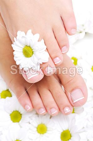 女性的脚与美丽的脚趾甲图片素材(图片编号:5